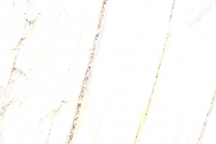 IMG_9734