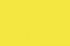 Arno-Pixelbilder_gelb_sm